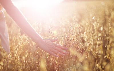 Achtsamkeit – Der Weg zu innerer Ruhe