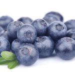 Heidelbeeren – das blaue Wunder