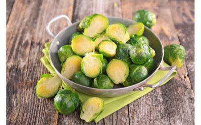 Unterschätztes Gemüse: Rosenkohl, Sellerie, Kohlrabi und Chicorée