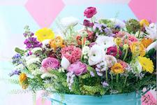 Blumenbüro Holland