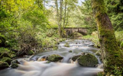 Wandern im Allgäu – Leserreise nach Oberstaufen