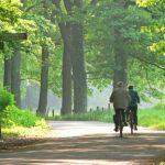 Die besten Tipps für die Rente