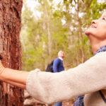 Die Kraft des Waldes